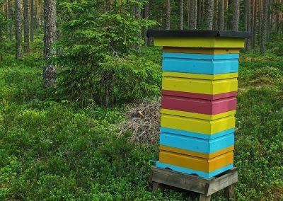 Mehiläispesä